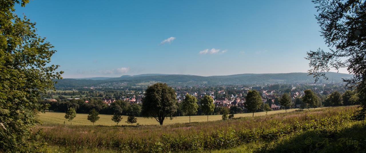 Panorama Blick vom Finkenborn auf Hameln