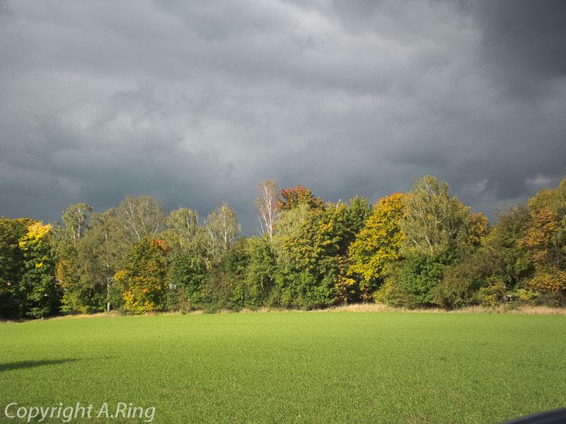 Herbst Impressionen 2012